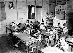 Disability and Education in Vietnam and Australia